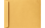 13 x 19 Jumbo Envelopes