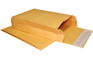 9 x 12 x 3 Expansion Envelopes