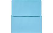 6 3/4 Remittance Envelopes