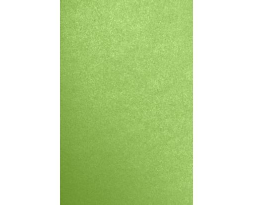 11 x 17 Cardstock Fairway Metallic