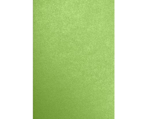 13 x 19 Cardstock Fairway Metallic