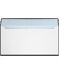 #16 Regular Envelopes (6 x 12)