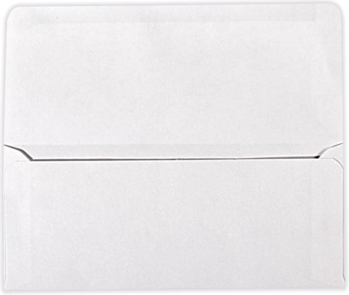 9 Remittance Envelopes (3 7/8 X 8 7/8 Closed) 24Lb. 24Lb. Bright