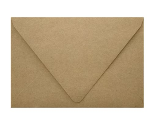 A1 Contour Flap Envelopes (3 5/8 x 5 1/8) Grocery Bag