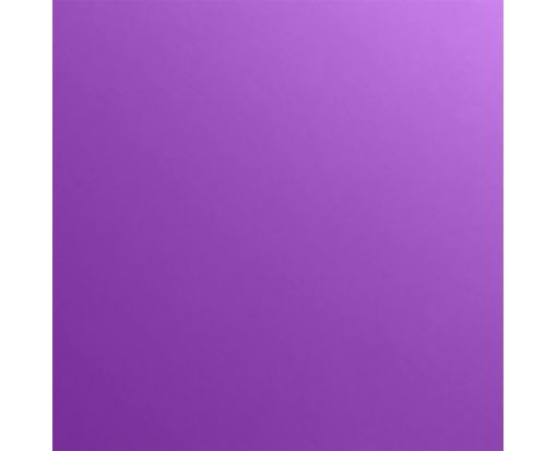 4 3/4 x 4 3/4 Square Flat Card Purple Power