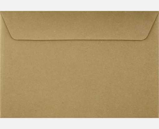 6 x 9 Booklet Envelopes Grocery Bag