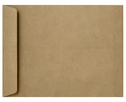 8 1/2 x 10 1/2 Open End Envelopes Grocery Bag