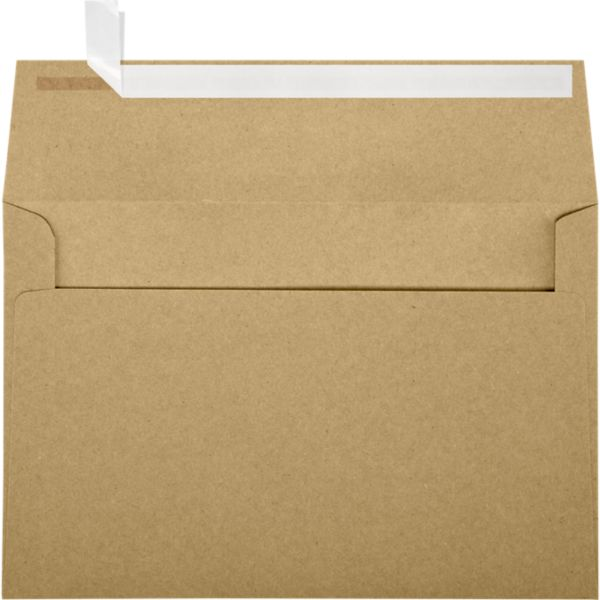 Grocery Bag Brown A9 Envelopes Square Flap 5 3 4 X 8 3 4