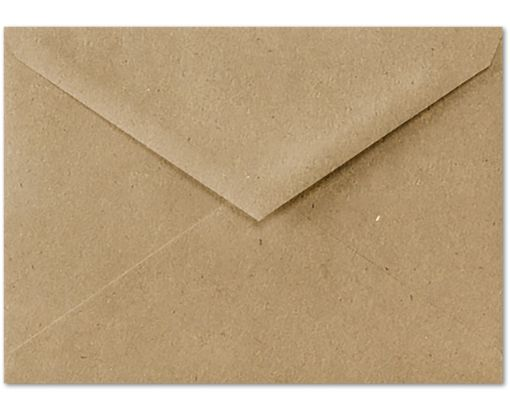 4 BAR Envelopes (3 5/8 x 5 1/8) Grocery Bag