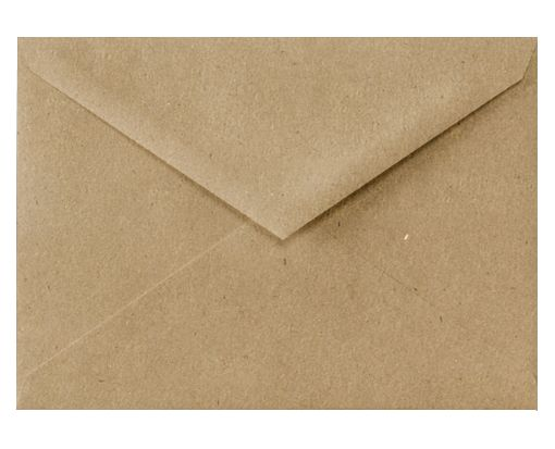 5 1/2 BAR Envelopes (4 3/8 x 5 3/4) Grocery Bag