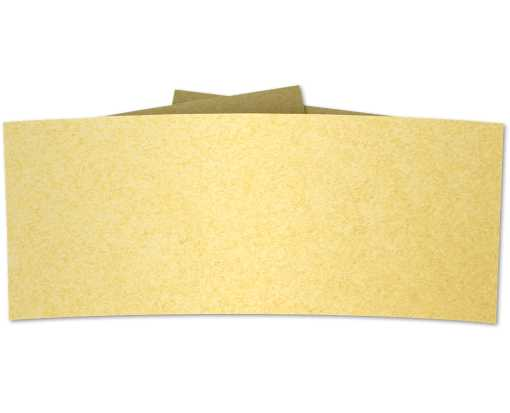 6 1/4 Belly Band Gold Metallic
