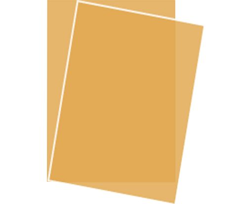 8 1/2 x 11 Paper Gold Translucent