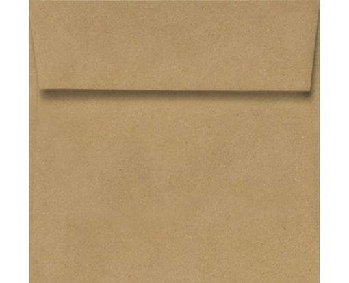 3 1/4 x 3 1/4 Square Envelopes Grocery Bag