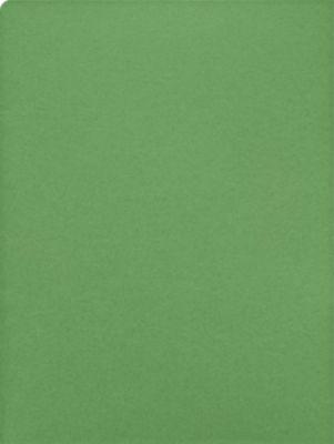 9 x 12 Presentation Folders Grasshopper Green