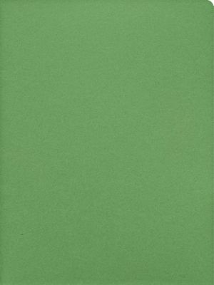 9 x 12 Presentation Folders Grasshopper Green