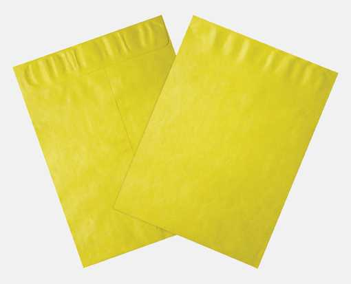 10 x 13 Open End Envelopes Citrus - Tyvek
