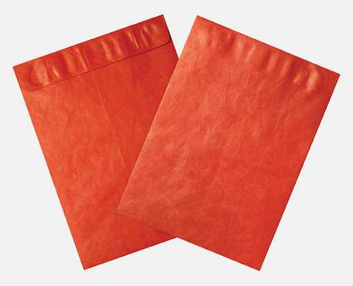 9 x 12 Open End Envelopes Holiday Red - Tyvek