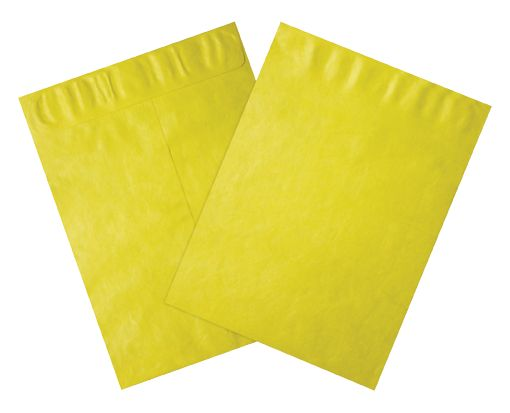9 x 12 Open End Envelopes Citrus - Tyvek