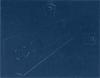 8 1/2 x 11 Certificate Board Navy Texture