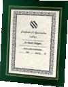 10 3/4 x 13 Certificate Frame w/ Easel Green Print