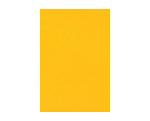 6 x 6 Pockets (4 3/4 x 4 3/4) Top Layer Card Sunflower