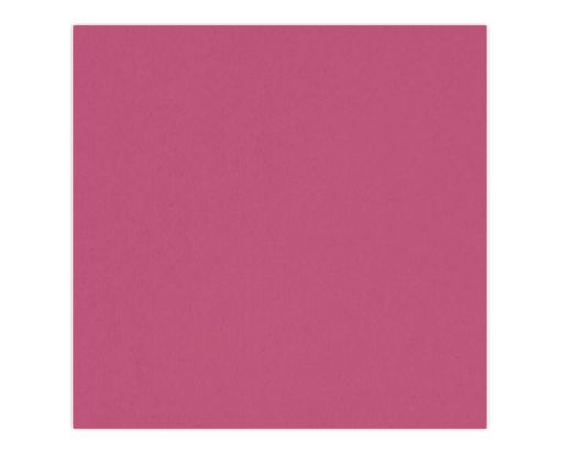 6 1/4 x 6 1/4 Petals (6 1/8 x 6 1/8) Base Layer Card Magenta