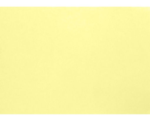 A1 Flat Card (3 1/2 x 4 7/8) Lemonade