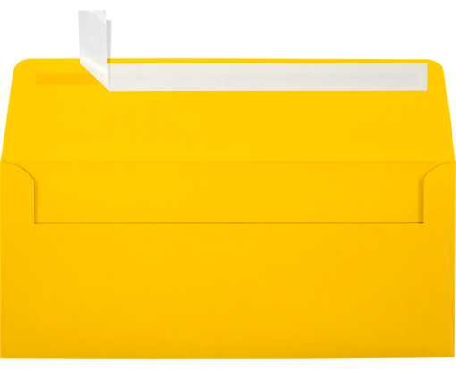 #10 Square Flap Envelopes (4 1/8 x 9 1/2) Sunflower