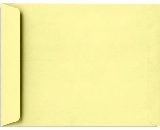 9 x 12 Open End Envelopes Lemonade