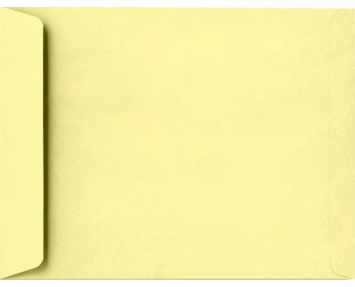 10 x 13 Open End Envelopes Lemonade