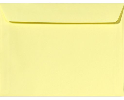 9 x 12 Booklet Envelopes Lemonade