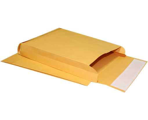 9 x 12 x 2 Expansion Envelopes 40lb. Brown Kraft