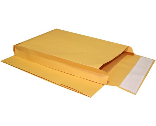 10 x 15 x 2 Expansion Envelopes 40lb. Brown Kraft