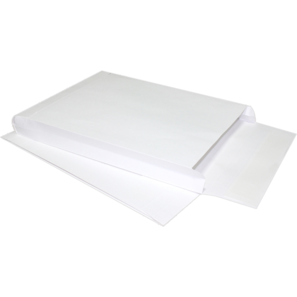 10 x 13 x 2 Expansion Envelopes 40lb. White Kraft