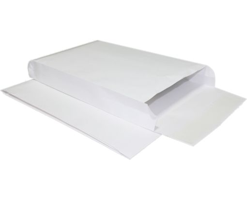 10 x 15 x 2 Expansion Envelopes 40lb. White Kraft