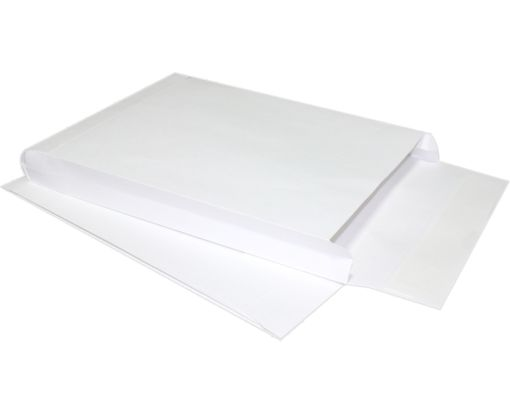 10 x 13 x 1 1/2 Expansion Envelopes 40lb. White Kraft