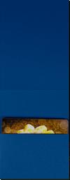 4 5/8 x 3 1/2 Gift Card Holder Navy