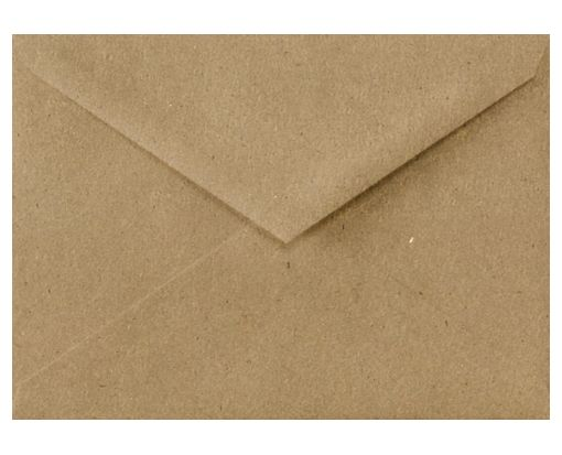 Lee BAR Envelopes (5 1/4 x 7 1/4) Grocery Bag