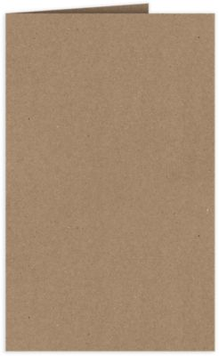 Legal Size Folders Grocery Bag Brown