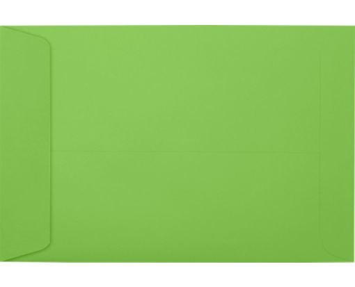 6 x 9 Open End Envelopes Limelight