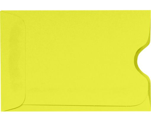 Credit Card Sleeve (2 3/8 x 3 1/2) Citrus