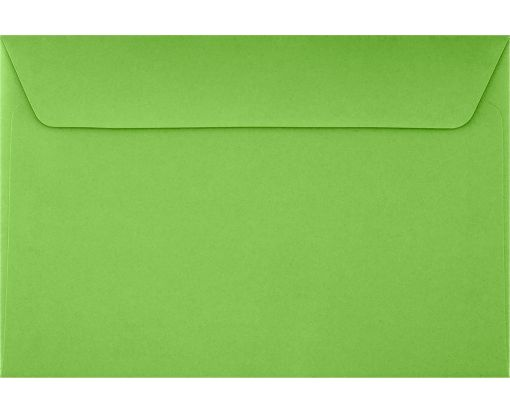 6 x 9 Booklet Envelopes Limelight