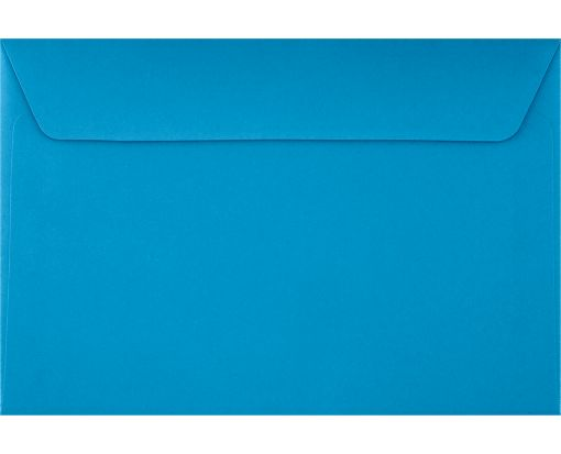 6 x 9 Booklet Envelopes Pool