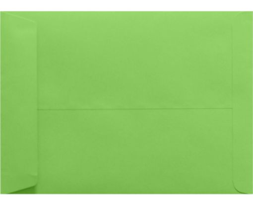 9 x 12 Open End Envelopes Limelight