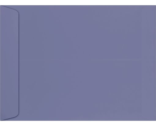 9 x 12 Open End Envelopes Wisteria