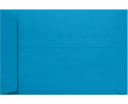 10 x 13 Open End Envelopes Pool