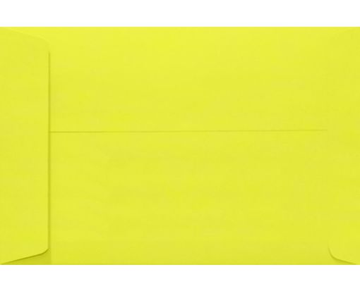 10 x 13 Open End Envelopes Citrus