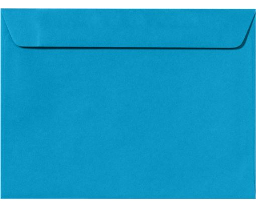 9 x 12 Booklet Envelopes Pool