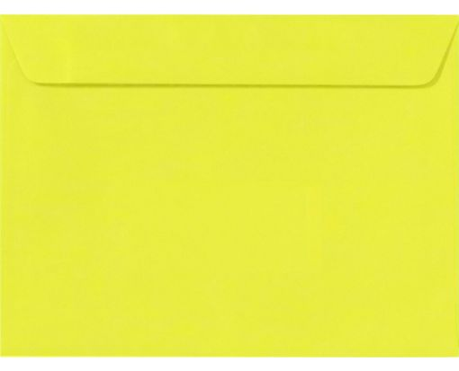 9 x 12 Booklet Envelopes Citrus
