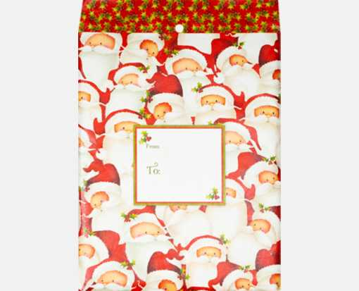 Mailing Envelope Medium Santa